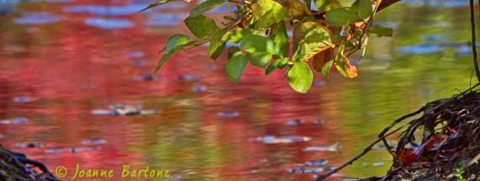 Series: Autumn's Splendor 01